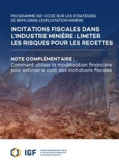 Cover of Tax Incentives in Mining: Minimising risks to revenue | Supplementary Guidance (French)
